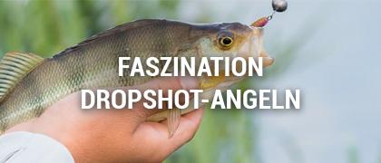 Zielfisch Dropshot
