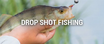 Drop Shot Fishing