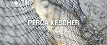 Perca Kescher