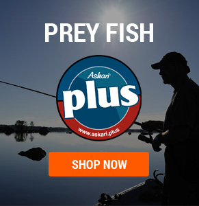 Prey Fish PLUS