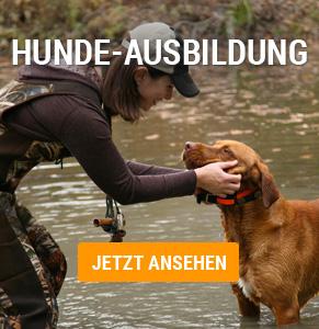 Hunde-Ausbildung