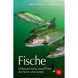 Buch: Fische - Süßwasserfische sowie Arten der Nord- und Ostsee von Harald Gebhardt, Andreas Ness