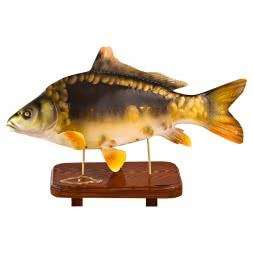 Deko-Fisch Karpfen Statuette