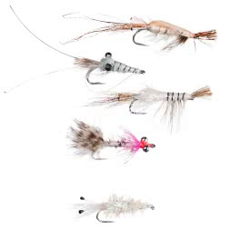 Dragon Fliegen-Sortiment Premium (Saltwater S)