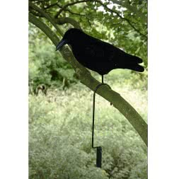 Lifthaken für Tauben/Krähen