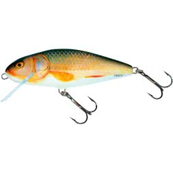 Salmo Perch Floating 12 cm - Real Roach