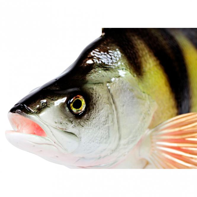 Deko fisch barsch 49 cm g nstig kaufen askari jagd shop for Fisch barsch