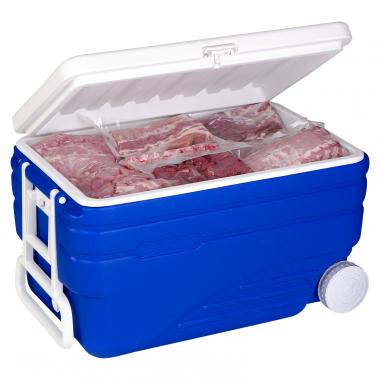 Cooler box Arctic fox (100 liters)