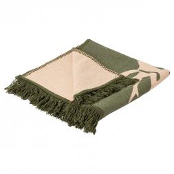CIT carpet rug roebuck