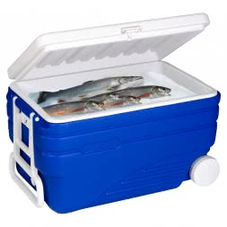 Cool Box POLARFUCHS 100 Litres