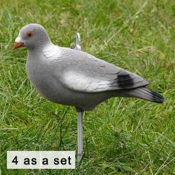 Decoy-pigeon Full Body powdered (4 as a set)