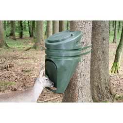 Deer Feeding Point