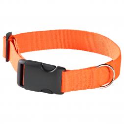 Dog Safety Collar