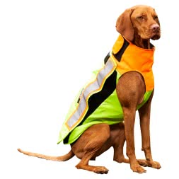 Dog Savety Vest