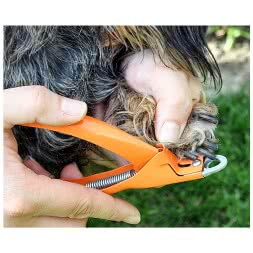 Dogs Claw Clippers