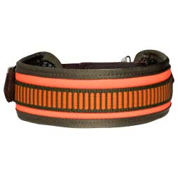 Heim Collar with Swivel