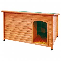 "Nobby Dog kennel ""LIMA TERRA"""