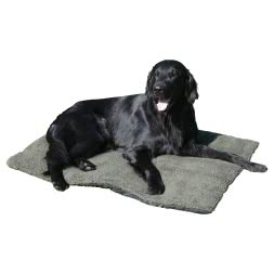 Outdoor Dog Blanket